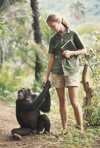 ChimpandGoodall